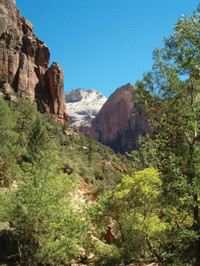 Parque nacional de Zion por Tour Trekker
