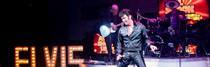 Tributo a Elvis el Show dentro del Planet Hollywood
